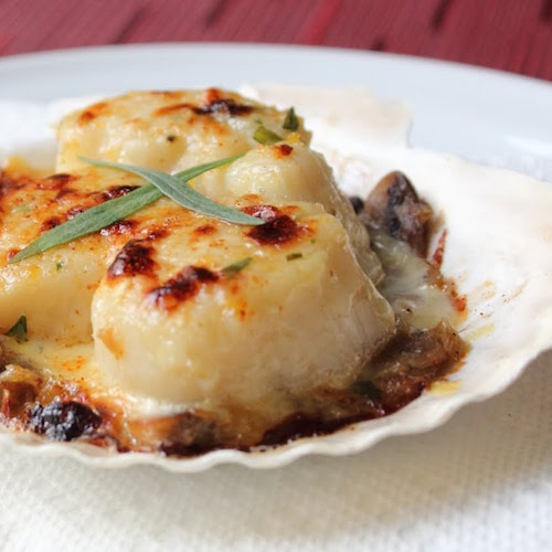 Scallop Recipes