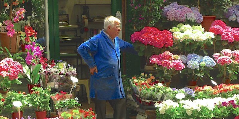 Marché aux Fleur