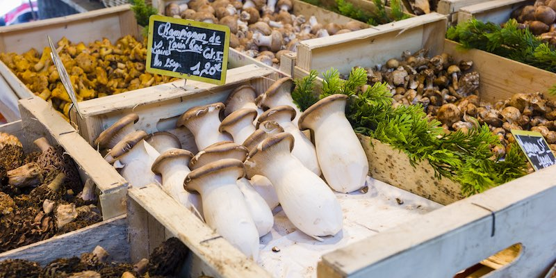 Mushrooms in Market