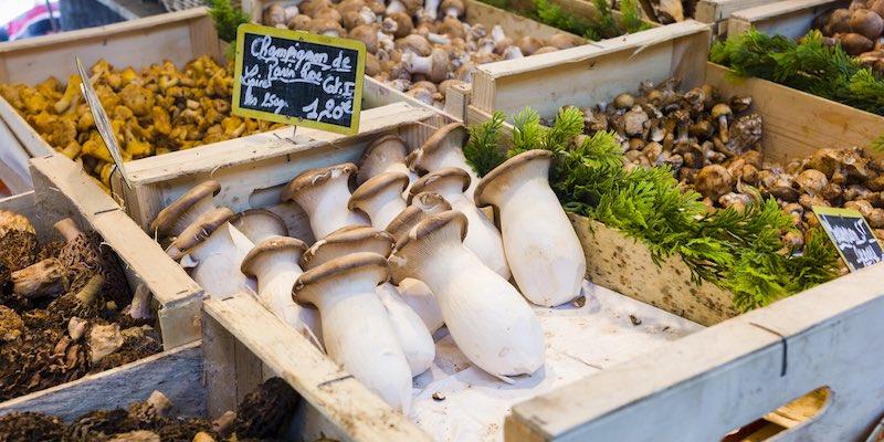 Mushrooms in Market
