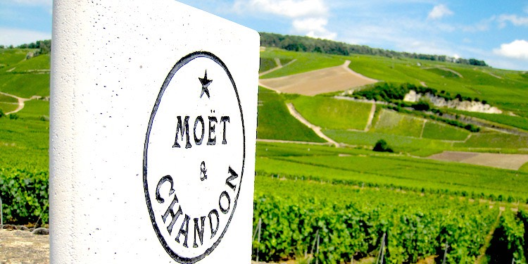 Private Day Excursions to Champagne Country