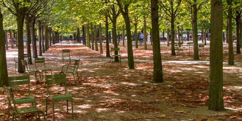 Jardin du Luxembourg, photo by Mark Craft