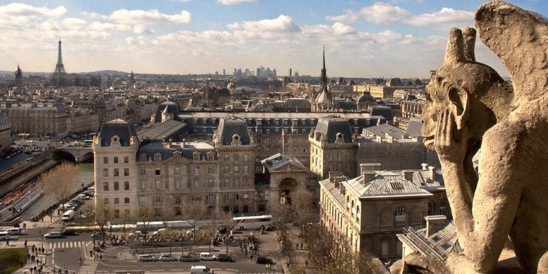 The View from Notre Dame