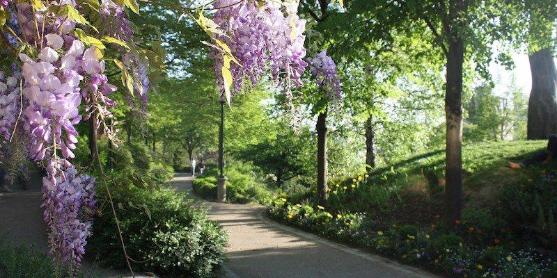 Pathway at Parc de Belleville, photo by Parissharing