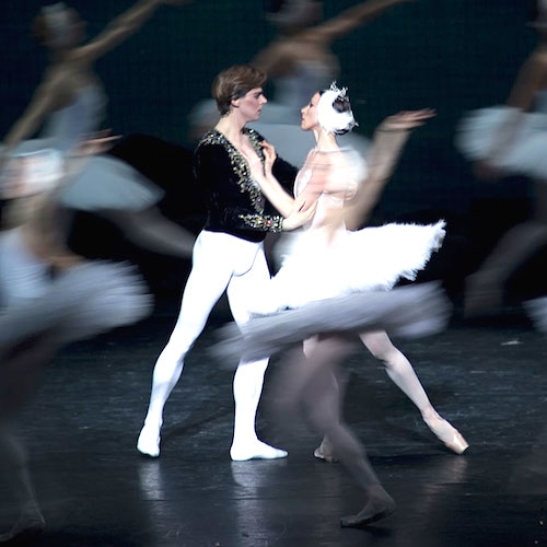 Swan Lake at Opera Bastille